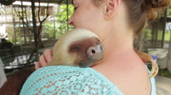 Woman Holding Sloth Stock Footage