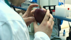Man in a white coat makes the examination of a mango fruit in the laboratory Stock Footage