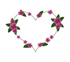 Pink Cape Periwinkle Flowers in A Heart Shape Stock Illustration