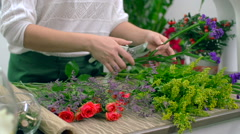 Conditioning Flowers for Arrangement - stock footage