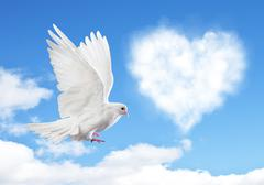 Blue sky with hearts shape clouds and dove. - stock photo