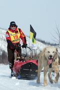 Kamchatka extreme Sled Dog Racing Beringia. Russian Far East - stock photo