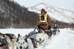 Kamchatka extreme Sled Dog Racing Beringia. Russia, Far East - stock photo