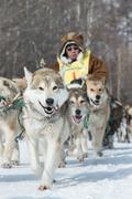 Kamchatka Dog Sled Racing Beringia. Russia, Far East. Kamchatka Peninsula - stock photo