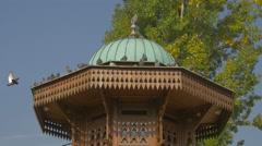 Pigeons standing on top of Sebilj fountain in Sarajevo Stock Footage