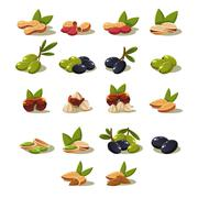 Olives and Nuts, Vector Illustration Modern Design Set - stock illustration