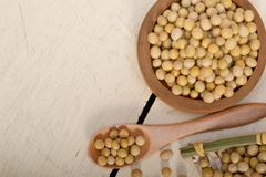 Organic soya beans Stock Photos