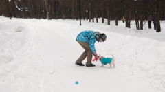 Dog retrieving a toy Stock Footage