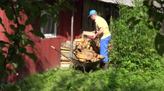 Farm worker man boy unload firewood wood from rusty wheelbarrow barrow. 4K Stock Footage