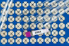 Zika virus concept photo with test tube - stock photo