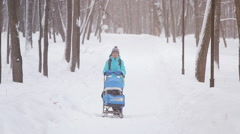 mother walking in a winter garden, snow day - stock footage