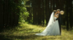 Beautiful wedding couple in forest - stock footage