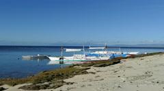 Catamaran Boats in the morning at Balicasag Island Stock Footage