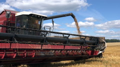 0050Harvesting of the summer. Unloading wheat from combine into a truck. Stock Footage
