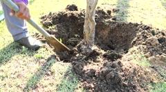 worker working in gardening job - stock footage