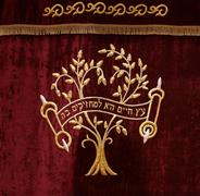 Hebrew tree of life on synagogue curtain for torah scrolls - stock photo