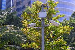 Security camera for monitoring events in urban garden. - stock photo