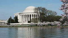Washington DC Jefferson Monument cherry blossom helicopter HD Stock Footage