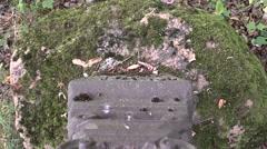 Broken cemetery grave Stock Footage