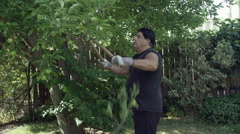 Man in yard trimming a tree pausing for chest pain. - stock footage