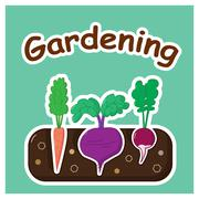 Gardening with vegetables Stock Illustration