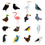 Birds vector set illustration. Eagle, parrot. Pigeon and toucan. Penguins - stock illustration