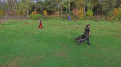 Woman and sheep dog make exercises on grass field Stock Footage