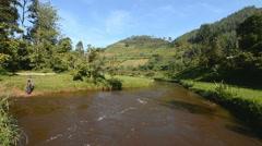 Bwindi national park, Uganda. Stock Footage