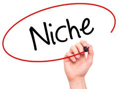 Man Hand writing Niche with black marker on visual screen. - stock photo