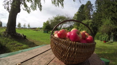 Wicker basket full of ripe apples on table outside, time lapse 4K Stock Footage