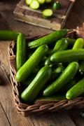 Raw Organic Mini Baby Cucumbers - stock photo