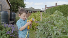 A little boy is watering his granddads vegetable garden and inspecting the crops - stock footage