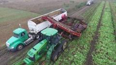 Aerial Flight Over Potato Harvest Stock Footage