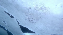 Freediver Holding his breath Under the Ice Stock Footage