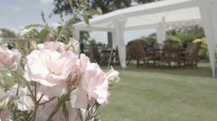 A very pretty English garden in the bloom of summer Stock Footage