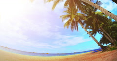 Fish eye lens wide angle background of palm trees on tropical sea coast and sun - stock footage