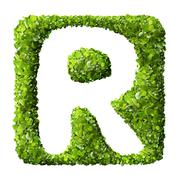 Letter R made of green leaves Stock Photos