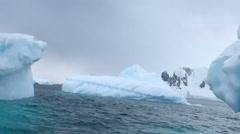 Cruising iceberg field Stock Footage