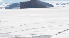 Penguins marching on fast ice, Antarctica Stock Footage