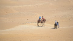 Riding a Camel across the Desert in Giza Egypt - stock footage
