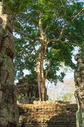 Cambodia, Angkor Archaeological Park - stock photo