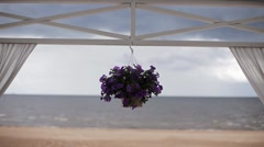 Flower pot with violets suspend on horizontal bar of entry. Coast on background Stock Footage