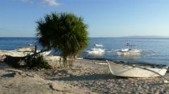 Catamaran Boats and a tree at the beach of Balicasag Island Stock Footage