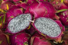 Pitaya fruits for sale at the market of Cacao, French Guiana, Department of Stock Photos