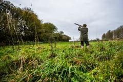 Gun shooting at bird on Driven pheasant shoot, Wiltshire, England, United Stock Photos