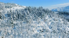 Idyllic Drone Footage Snow Covered Trees Nature Beautiful Winter Mountain Europe Stock Footage