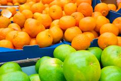 Pile of fresh green pamelos and oranges - stock photo
