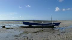 Catamaran Boat at Anda beach Stock Footage