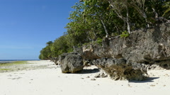 Rocky coastline at Anda beach in the morning during low tide Stock Footage