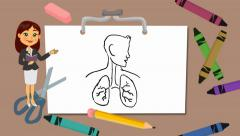 lungs - drawing board - teacher 01 - stock footage